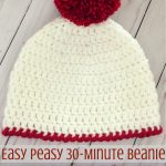 Crochet Hat Patterns Easy Peasy 30 Minute Beanie Free Crochet Pattern