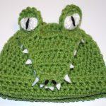 Crochet Alligator Hat Alligator Hat Ba Ideas Pinterest Crochet Hats Crochet And Hats