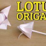 Diy Origami Flowers Origami Flowers Tutorial Origami 3d Gifts