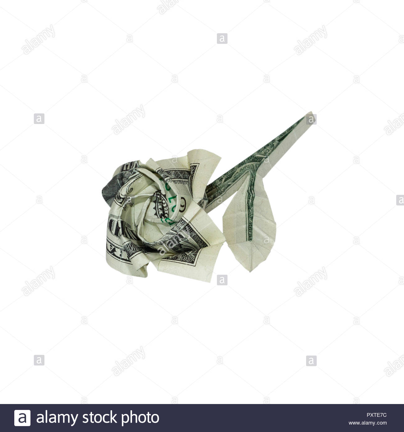 Dollar Bill Origami Money Origami Rose Flower Folded With Real One Dollar Bill Isolated