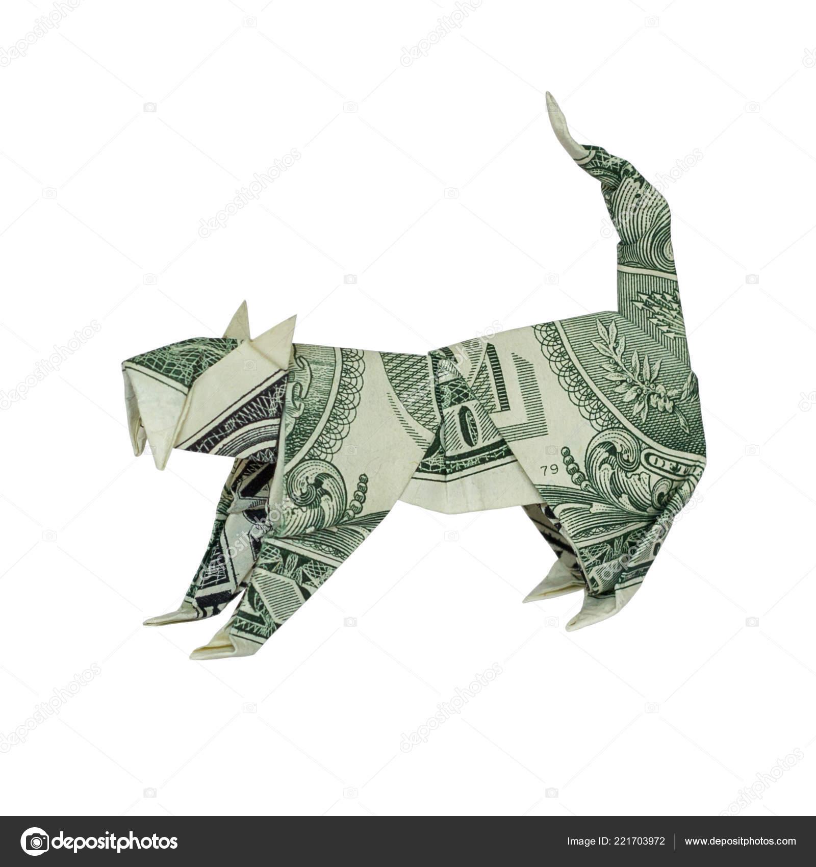 Dollar Bill Origami Money Origami Wild Cat Folded Real One Dollar Bill Isolated Stock