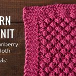 Washcloth Knitting Pattern Easy Learn To Knit A Loganberry Dishcloth Youtube